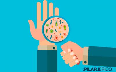 ¿Por qué las bacterias de nuestro organismo también necesitan una dieta rica y saludable?