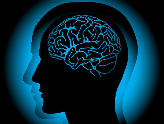 Ilustración de persona de perfil en color negro con cerebro en color azul claro